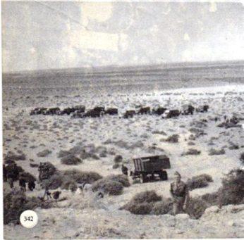 columna-espac3b1ola-guerra-de-ifni